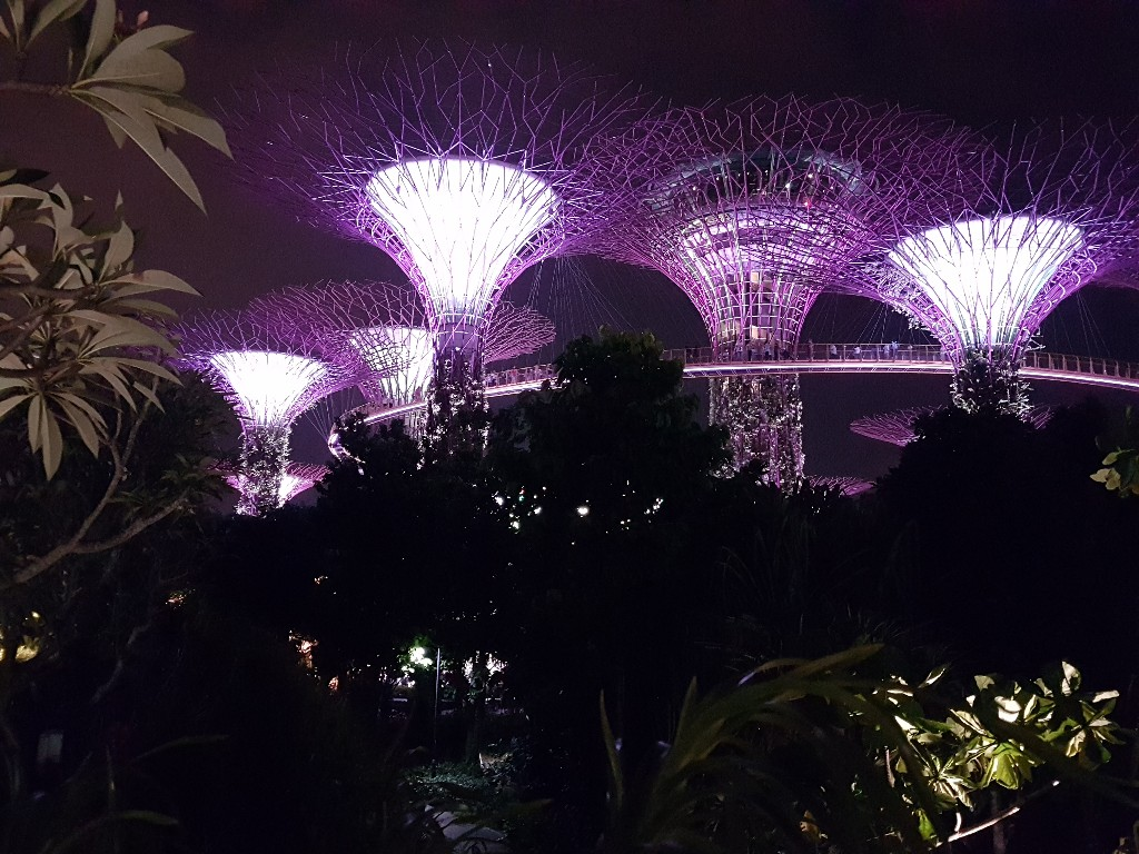 Singapore – Botanic Garden und Gardens by the Bay