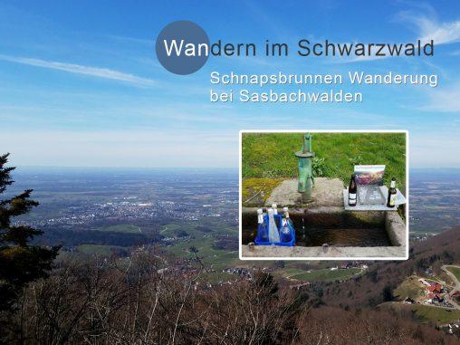 Schnapsbrunnen-Wanderung bei Sasbachwalden, Schwarzwald