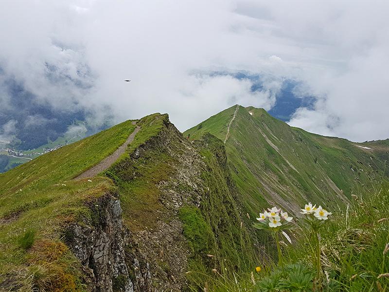 Blick vom Fellhorn Gipfel