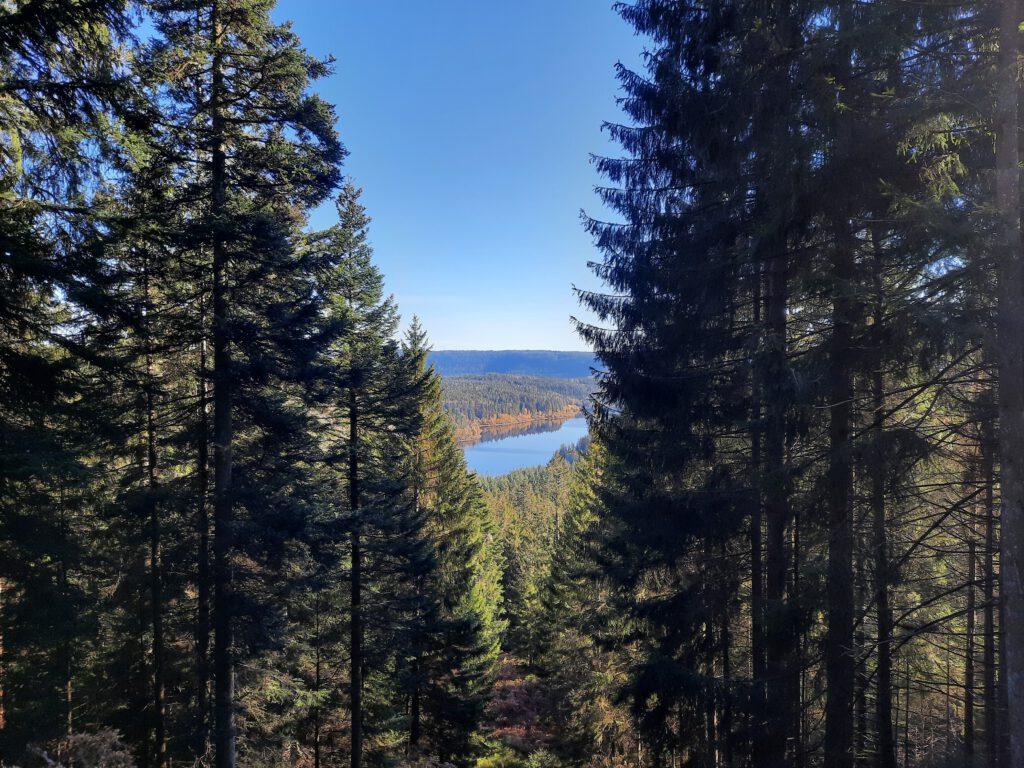 Aussicht auf die Schwarzenbachtalsperre auf dem Weg zum Herrenwieser See