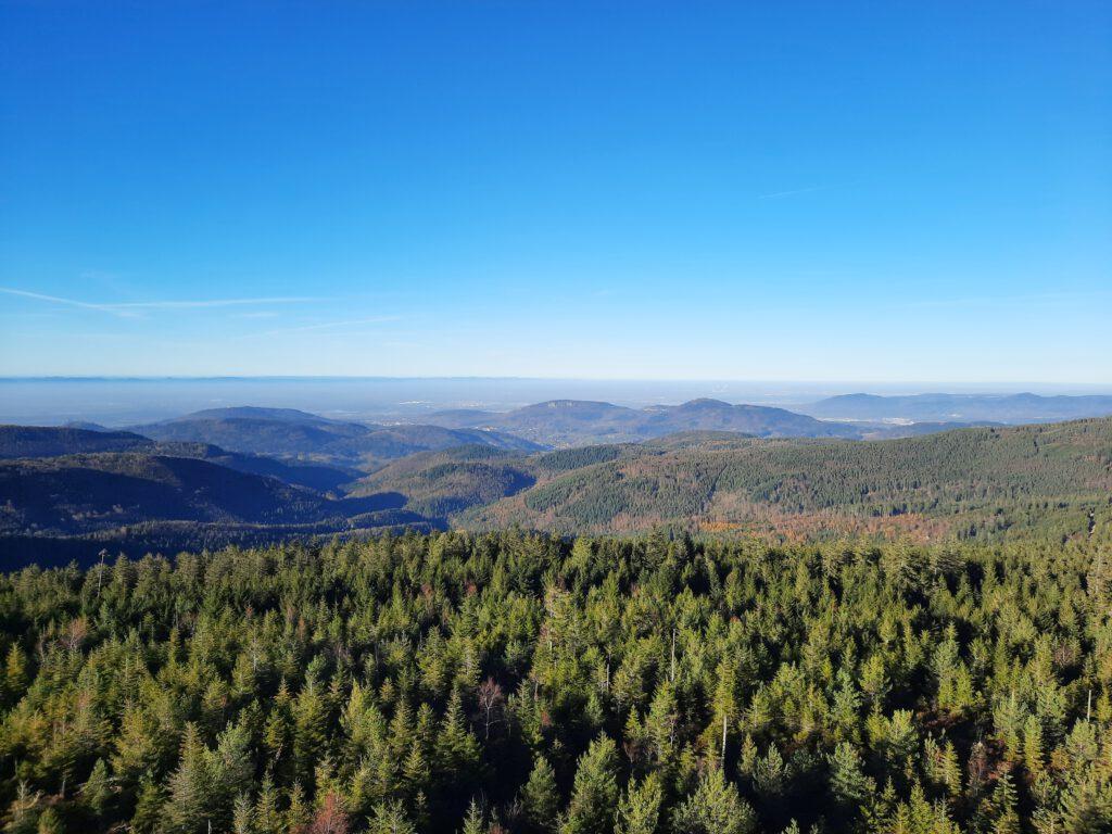 Traumhafte Aussicht auf den Nordschwarzwald