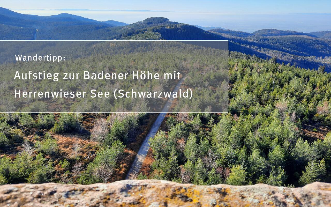 titelbild herrenwieser See