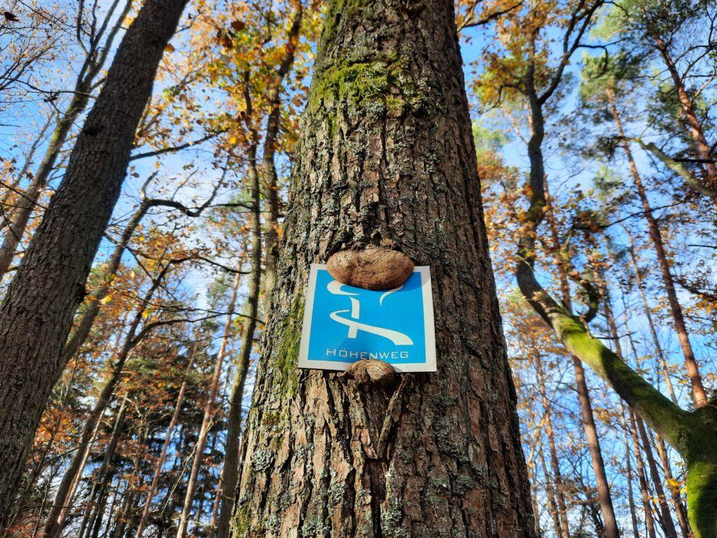 Wandersymbol des Rinnthaler Höhenwegs