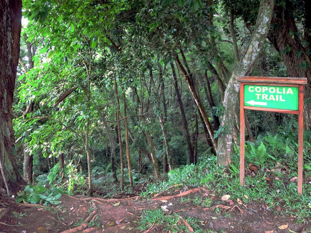 Der Copolia Trail