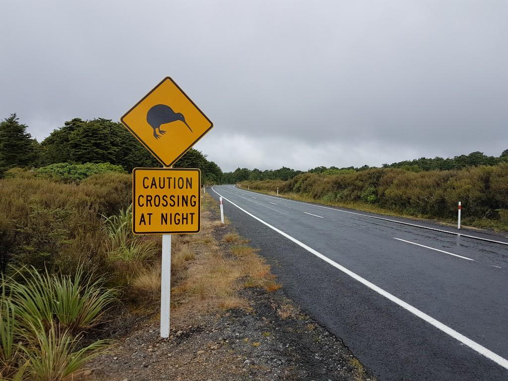 Der Tongariro Nationalpark
