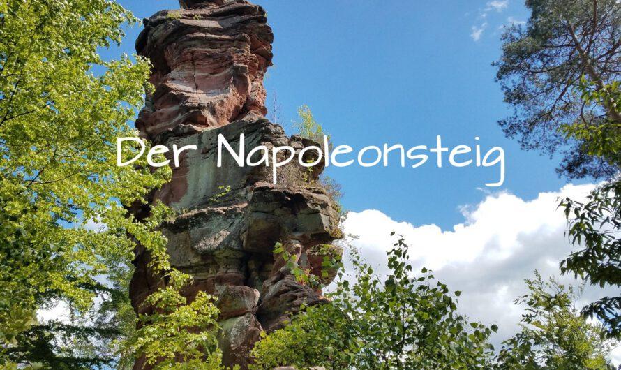 Premiumwanderweg: Napoleonsteig in der Pfalz