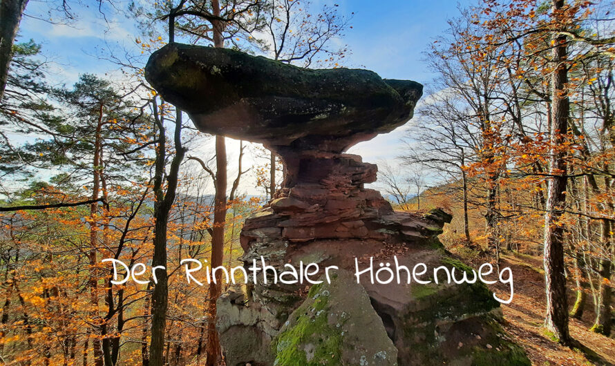 Wandertipp: Rinnthaler Höhenweg (Südpfalz)