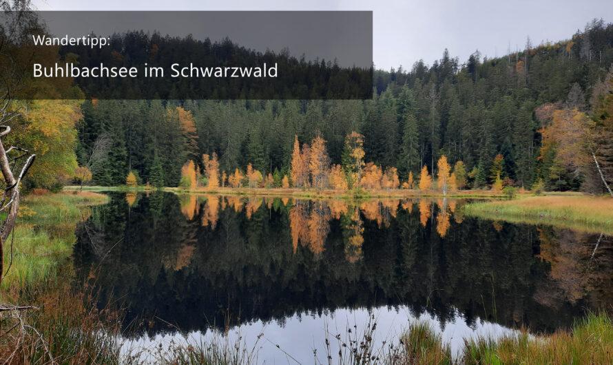 Wandertipp: Buhlbachsee im Schwarzwald