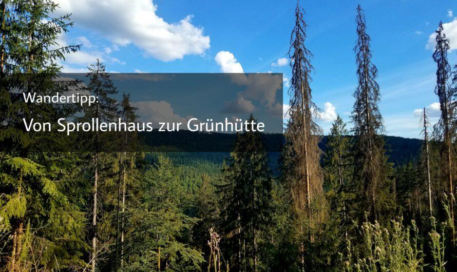 Wandertipp: Von Sprollenhaus zur Grünhütte auf dem Heidelbeerweg
